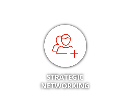 Strategic Networking